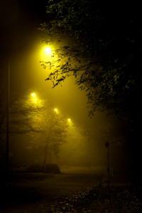 Lichter der Nacht 01