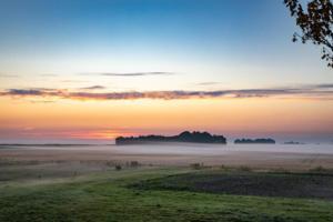 early morning fog II
